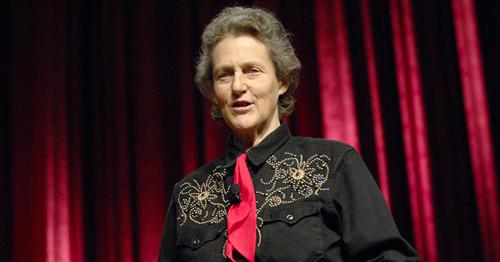 Temple-Grandin