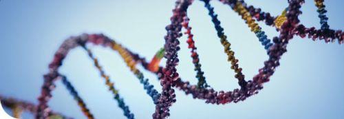 GeneticCounseling